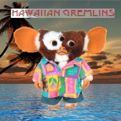 hawaiian gremlins